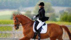At binen kadınlar daha sağlıklı oluyor
